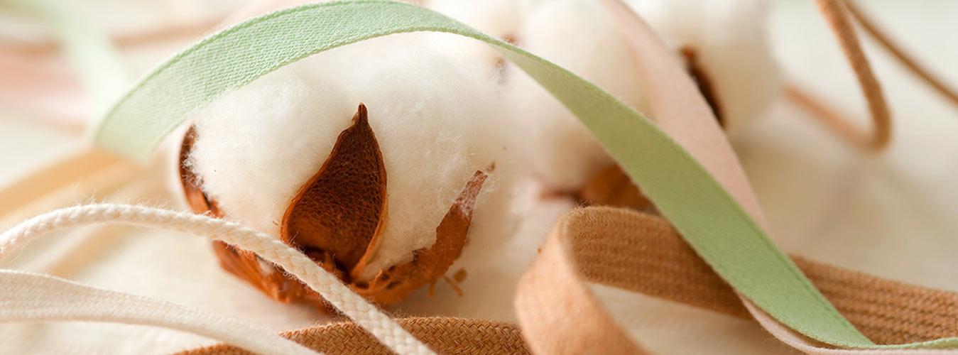 nastri in cotone organico certificato